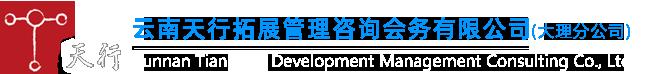 天行大理商业项目策划方案公司